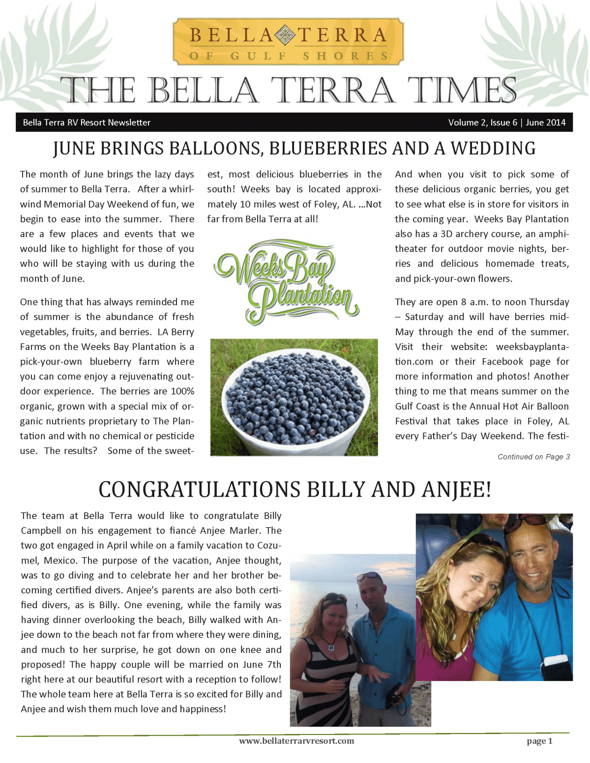 Bella Terra Newsletter Cover Page June 2014